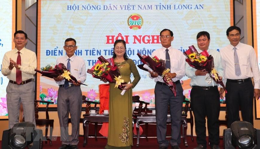 Người phụ nữ đầu tiên trồng, bán chanh không hạt tại Việt Nam
