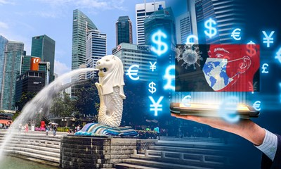 Singapore - Việt Nam kết nối doanh nghiệp ứng phó Covid-19