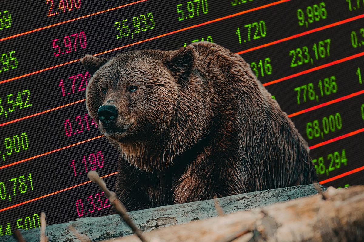 Bear Market là gì? - Thị trường con gấu là gì?
