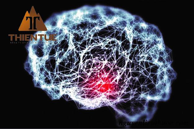 Pregnenolone có tác dụng gì lên hệ thống thần kinh?