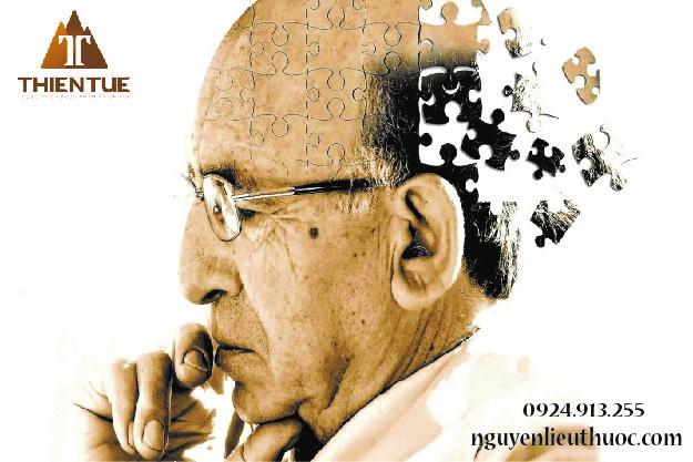 Pregnenolone giúp tăng cường chức năng nhận thức