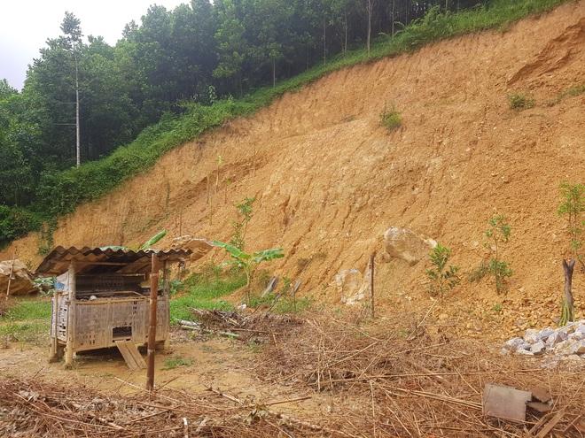 Đồi Vó Nước nứt toác vì mưa lớn, Ninh Bình di dời khẩn cấp nhiều hộ dân - 1
