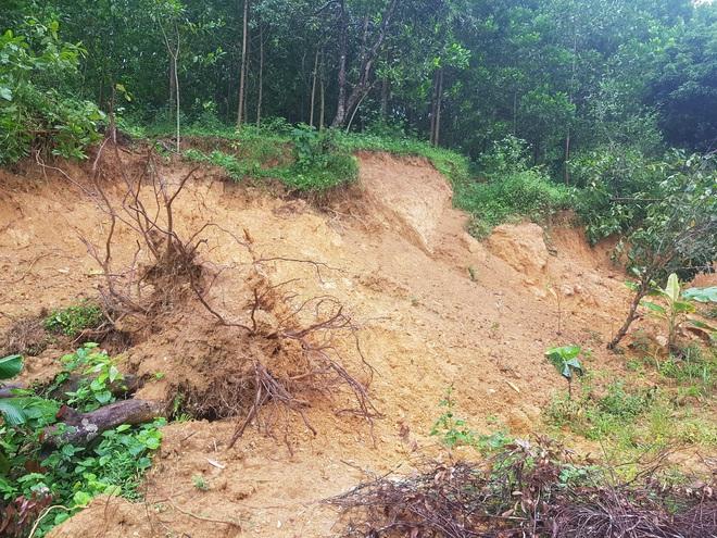 Đồi Vó Nước nứt toác vì mưa lớn, Ninh Bình di dời khẩn cấp nhiều hộ dân - 3