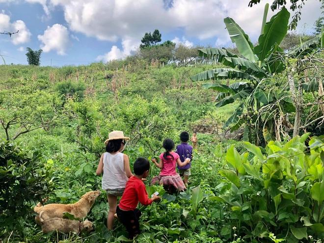 Mắc kẹt ở Mộc Châu do Hà Nội giãn cách, gia đình làm vườn đẹp mê - 9