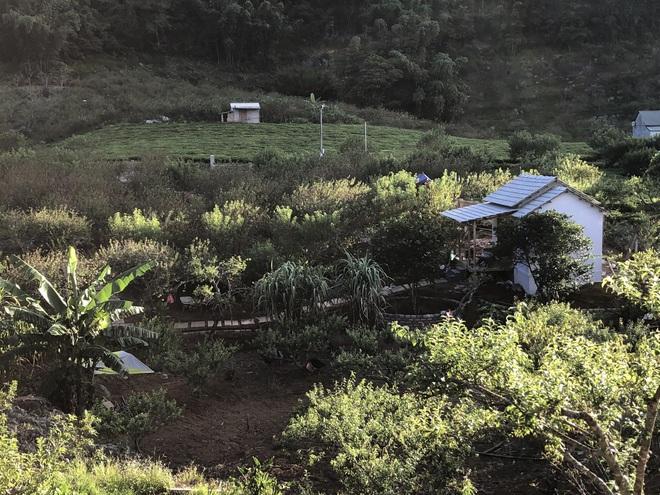 Mắc kẹt ở Mộc Châu do Hà Nội giãn cách, gia đình làm vườn đẹp mê - 3