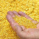 Vàng thế giới quay đầu giảm nhẹ khi đồng USD tăng