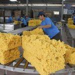 Hoa Kỳ tiếp tục tăng nhập khẩu cao su từ thị trường Việt Nam